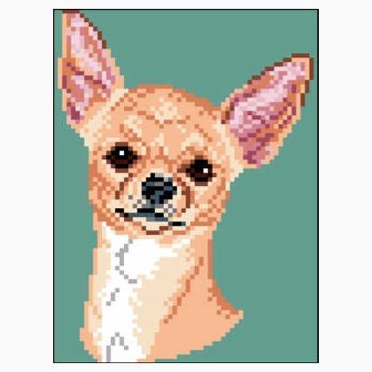 Chihuahua Short Coat Tan