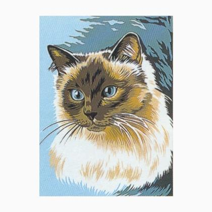 Gatto Siamese Da Margot De Paris Mezzopunto E Canvas Kit Casa
