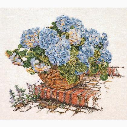 Ortensia blu ii aida da thea gouverneur fiori e frutti - Ortensia blu ...